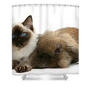 Ragdoll Kitten And Lionhead Rabbit Shower Curtain
