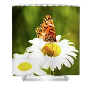 Raggedy Butterflly Shower Curtain