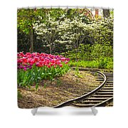 Railroad Beauties Shower Curtain