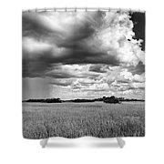 Rain Everglades Shower Curtain