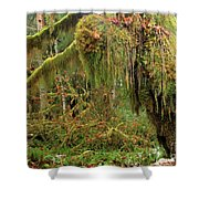 Rain Forest Crocodile Shower Curtain
