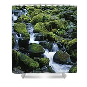 Rain Forest Stream Shower Curtain