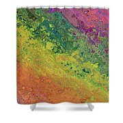Rainbow Abstract Shower Curtain