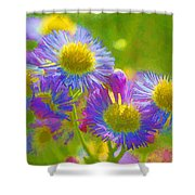 Rainbow Colored Weed Daisies Shower Curtain