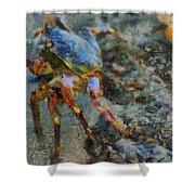 Rainbow Crab Shower Curtain
