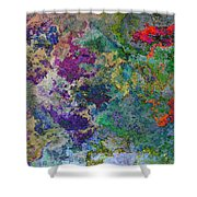 Rainbow Fish Watercolor Abstract Art Shower Curtain