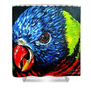 Rainbow Lorikeet Look Shower Curtain