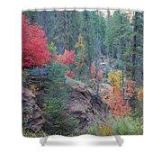 Rainbow Of The Season Shower Curtain by Heather Kirk