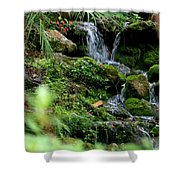 Rainbow Springs Waterfall Shower Curtain
