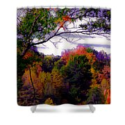 Rainbow Treetops Shower Curtain by DigiArt Diaries by Vicky B Fuller