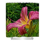 Raindrops On Lilly Shower Curtain