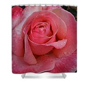Raindrops On Roses Eight Shower Curtain