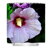 Raindrops On Roses Of Sharon Shower Curtain
