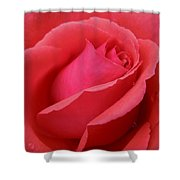 Raindrops On Roses Six Shower Curtain