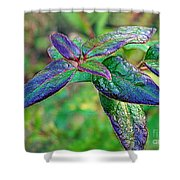 Raindrops On The Leaves Shower Curtain