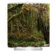 Rainforest Jaws Shower Curtain