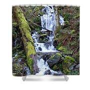 Rainforest Waterfall Shower Curtain