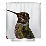 Rainy Day Guest Shower Curtain