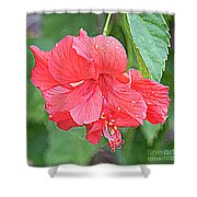 Rainy Day Hibiscus Shower Curtain