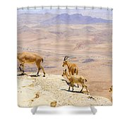 Ramon Crater Negev Israel Shower Curtain