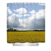 Rape Field Shower Curtain