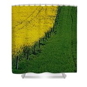 Rapeseed Growing In A Field, Ireland Shower Curtain
