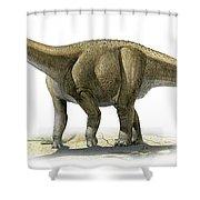 Rapetosaurus Krausei, A Prehistoric Era Shower Curtain