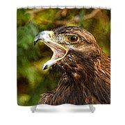 Raptor Rage Shower Curtain