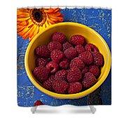 Raspberries In Yellow Bowl Shower Curtain
