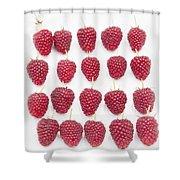 Raspberry Formation Shower Curtain