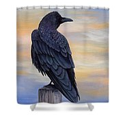 Raven Beauty Shower Curtain