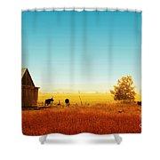 Rawdon Everyday Life 02 Shower Curtain