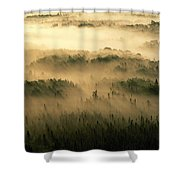 Rays Of Early Morning Sunlight Beam Shower Curtain