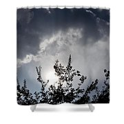 Reaching For The Clouds Shower Curtain