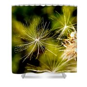 Ready For Lift Off Shower Curtain
