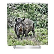 Ready To Charge Shower Curtain