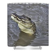 Ready To Jump Shower Curtain