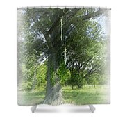 Recalling Younger Days Shower Curtain