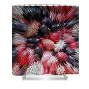 Red And Black Explosion #01 Shower Curtain