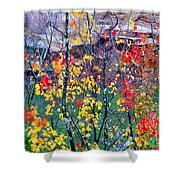 Red And Gold In Quarry At Elephant Rocks State Park Shower Curtain