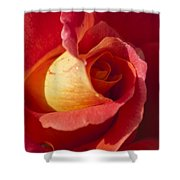 Red And Orange 2 Shower Curtain