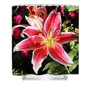 Red And White Tiger Lily Shower Curtain