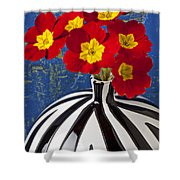 Red And Yellow Primrose Shower Curtain