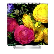 Red And Yellow Ranunculus Flowers Shower Curtain