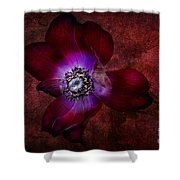 Red Anemone Shower Curtain