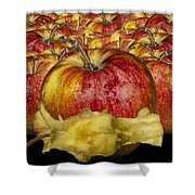 Red Apples And Core Shower Curtain