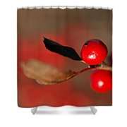 Red As A Winterberry Shower Curtain