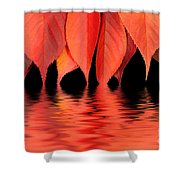 Red Autumn Leaves In Water Shower Curtain