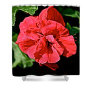 Red Begonia Shower Curtain