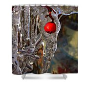 Red Berry In Icicle Shower Curtain